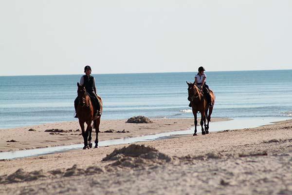 Excursiones a caballo. Vacaciones con niños en Formentera.